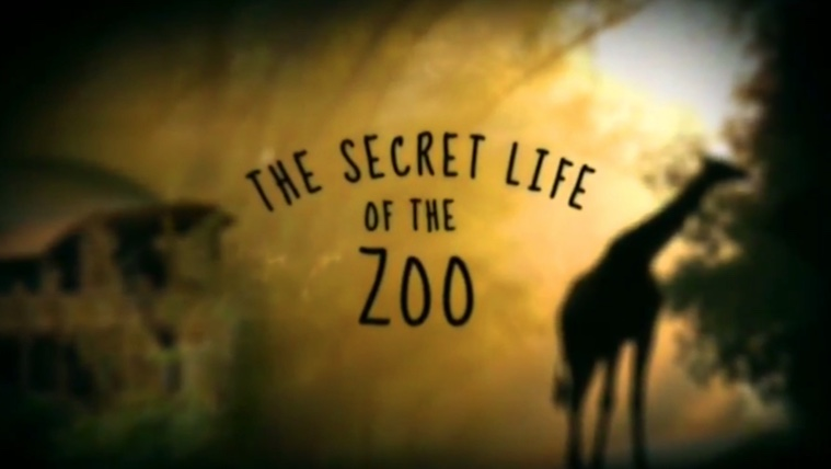 The Secret Life of the Zoo TV Show on Animal Planet: canceled or renewed?