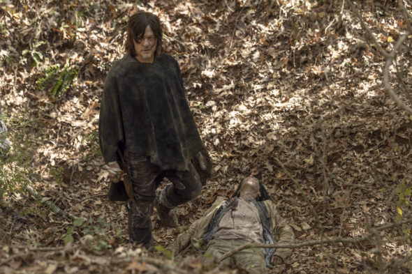 The Walking Dead TV show on AMC: ending with season 11, no season 12