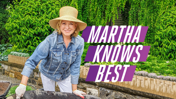Martha Knows Best TV Show on HGTV: canceled or renewed?