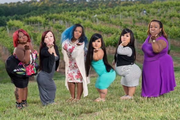 Little Women: Atlanta TV Show on Lifetime: canceled or renewed?
