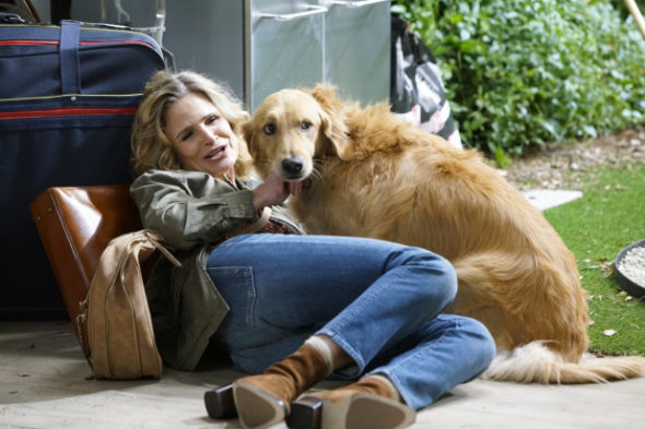 Call Your Mother TV show on ABC: canceled or renewed for season 2?
