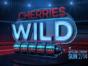Cherries Wild TV show on FOX: season 1 ratings