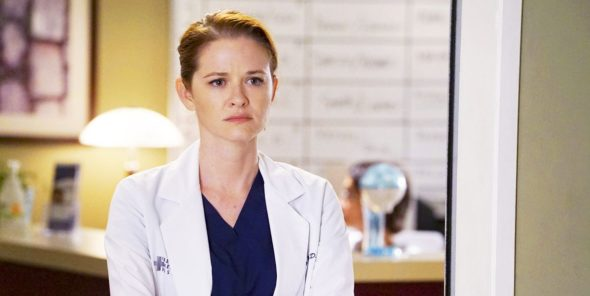 Grey's Anatomy TV Show on ABC: canceled or renewed?
