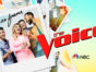 The Voice TV show on NBC: season 20 ratings