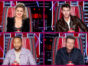 The Voice TV show on NBC: canceled or renewed for season 21?