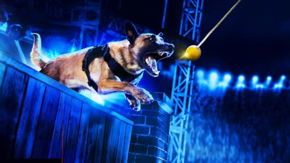 America's Top Dog TV Show on A&E: canceled or renewed?