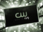 2020-21 The CW TV shows Viewer Votes - Which shows would the viewers cancel or renew?