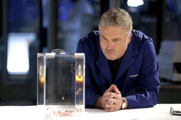 CSI: Vegas TV show on CBS: canceled or renewed?