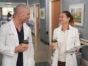 Grey'sAnatomy TV show on ABC: canceled or renewed for season 19?