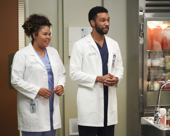 Grey's Anatomy TV show on ABC: canceled or renewed for season 19?