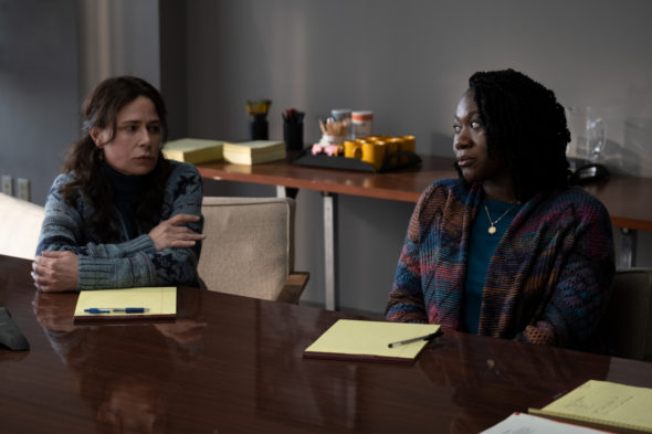 American Rust TV show on Showtime: canceled or renewed for season 2?