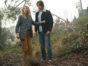La Brea TV show on NBC: canceled or renewed for season 2?